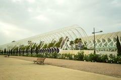 Triangulärt område av allmänhetträdgården med gömma i handflatan i Valencia Arkivfoto