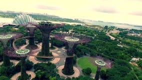 Förbluffa flyg- sikt för surr 4k på den turist- destinationen Singapore Asien för det moderna stads- arkitekturblommatornet i grä arkivfilmer
