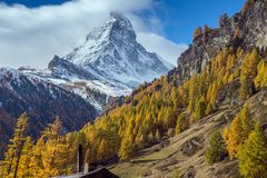 Förbluffa höstpanorama till den Zermatt semesterorten, fjällängar, Schweiz royaltyfri bild