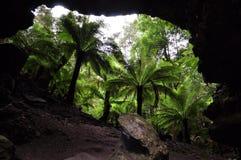Förbluffa landskap på den Trowutta bågen, Tasmanien i Australien arkivfoto