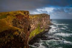 Förbluffa Latrabjarg i Island Arkivbilder