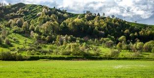 Förbluffa panorama- landskap med grönt gräs, kullar och träd, soligt väder, molnig himmel arkivfoto