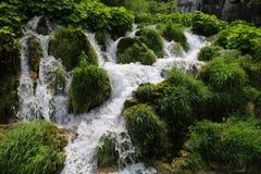 Förbluffa Plitvice sjönationalparken, Kroatien Arkivbild