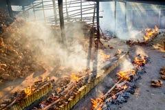 Förbränningväxten bränner ris grillade i bambu soa för klibbiga ris Royaltyfria Foton