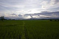 Förbud Huai Nam Dip Royaltyfria Foton