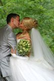 förbunden att gifta sig nytt Royaltyfri Fotografi