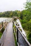 Fördämningen på Searsville sjön som lokaliseras i Jasper Ridge Biological Preserve på en regnig dag, San Francisco Bay område, Ka royaltyfri bild