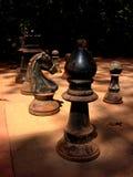 fördärvade antika chessmen Arkivbild