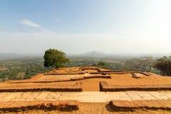Fördärvar överst av den Sigiriya lion'sens slott för rock Arkivfoton