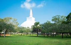 Fördärvar av Anuradhapura, Sri Lanka Arkivfoto