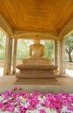 Fördärvar av Anuradhapura, Sri Lanka Fotografering för Bildbyråer