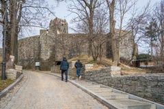 Fördärvar av den Bolkow slotten Royaltyfri Fotografi