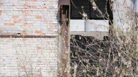 Fördärvar av den förstörda byggnaden eller lokalen stock video