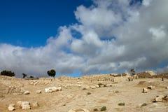 Fördärvar av den forntida citadelen i Amman Royaltyfri Foto