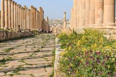 Fördärvar av den forntida Jerashen, Greco-romaren staden av Gerasa i modern Jordanien Fotografering för Bildbyråer