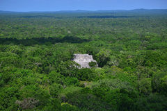 Fördärvar av den forntida Mayan staden av Calakmul Fotografering för Bildbyråer