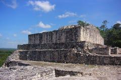 Fördärvar av den forntida Mayan staden av Calakmul Arkivbild