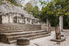 Fördärvar av den forntida Mayan staden av Calakmul Arkivfoton
