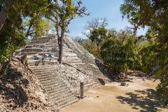 Fördärvar av den forntida Mayan staden av Copan Royaltyfria Bilder