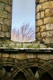 Fördärvar av den Holyrood abbotskloster Royaltyfri Foto