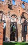 Fördärvar av den Tartu domkyrkan fotografering för bildbyråer