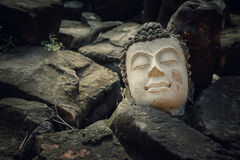 Fördärvar av en Buddhabild Headl på den Phutthaisawan templet i historiska Ayuthaya parkerar, UNESCOvärldsarvet Royaltyfri Fotografi