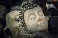 Fördärvar av en Buddhabild Headl på den Phutthaisawan templet i historiska Ayuthaya parkerar, UNESCOvärldsarvet Arkivfoto
