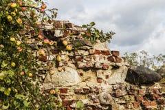 Fördärvar av en gammal fästning Arkivbilder