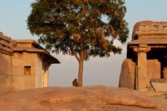 Fördärvar av ett gammalt hinduiskt tempel Arkivbilder