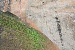Fördärvar av fästning överst av Sigiriya Lion Rock Arkivfoton