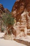 Fördärvar av forntida stad av Petra, Jordanien Arkivfoton