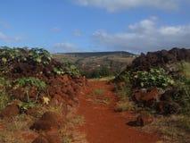 Fördärvar av fortet Elizabeth, Kauai, Hawaii royaltyfri fotografi