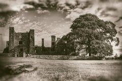 Fördärvar av gammal abbotskloster med det stora trädet, och förgrund loggar in monokromt - tappningfotografi fotografering för bildbyråer