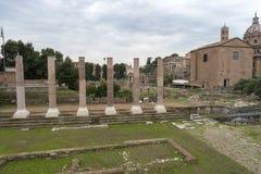 Fördärvar av huset av vestalsna i Roman Forum italy rome arkivbilder