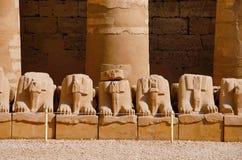 Fördärvar av korridoren av sfinxer som placeras i Karnak tempelkomplex, består av en vidsträckt blandning av murkna tempel, kapel Arkivbilder
