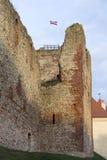 Fördärvar av Livoniabeställningsslotten byggdes i mitt av det 15th århundradet Bauska Lettland i höst Lettisk flagga på till Arkivfoton