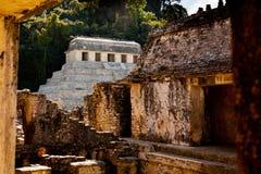 Fördärvar av Palenque arkivfoton