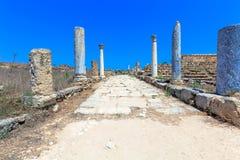 Fördärvar av Salamis nära Famagusta royaltyfria bilder