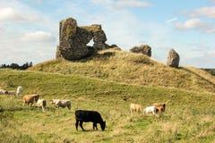 Fördärvar av slotten. Clonmacnoise. Irland royaltyfri fotografi