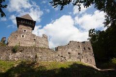 Fördärvar av slotten Nevytske i Transcarpathian region Uzhgorod foto Nevitsky slott som byggs i det 13th århundradet ukraine Royaltyfria Foton