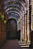 Fördärvar av springbrunnabbotskloster Royaltyfria Bilder