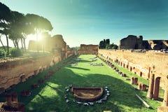 Fördärvar av stadion Domitanus på den Palatine kullen i Rome Royaltyfria Bilder