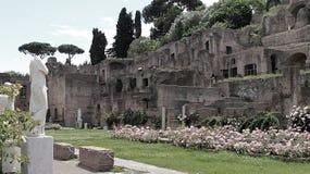 Fördärvar av templet av Vesta på den Foro romanoen i Rome fotografering för bildbyråer