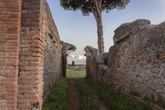 Fördärvar den forntida romerska avenyn royaltyfria foton