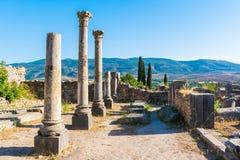 Fördärvar i den forntida gamla roman staden Volubilis, Unesco, Meknes, Marocko royaltyfri foto