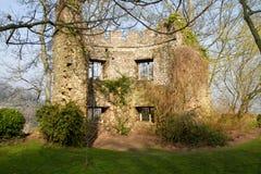 Fördärvar i det Dunster slottet Somerset England Arkivbild