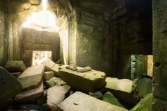 Fördärvar i tempel för Ta Prohm Royaltyfria Bilder