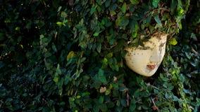 Fördärvar statykvinnors framsida i buskarna Fotografering för Bildbyråer