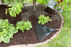 Fördelande komposttäckning för man i trädgården Arkivbild