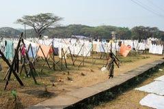 Fördelande linne för dam som ska torkas på en tvätteri av fortet Cochin Royaltyfri Bild